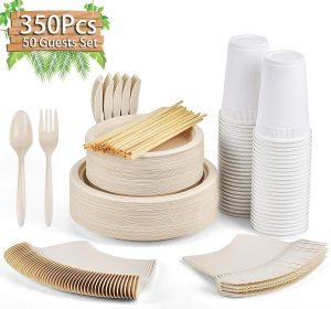 Gezond Disposable Dinnerware Set